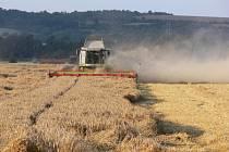 Zemědělci si pochvalují vyšší výnosy žní.