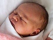 Julie Sedláková, Lešany, narozena 6. října v Prostějově, míra 52 cm, váha 3450 g