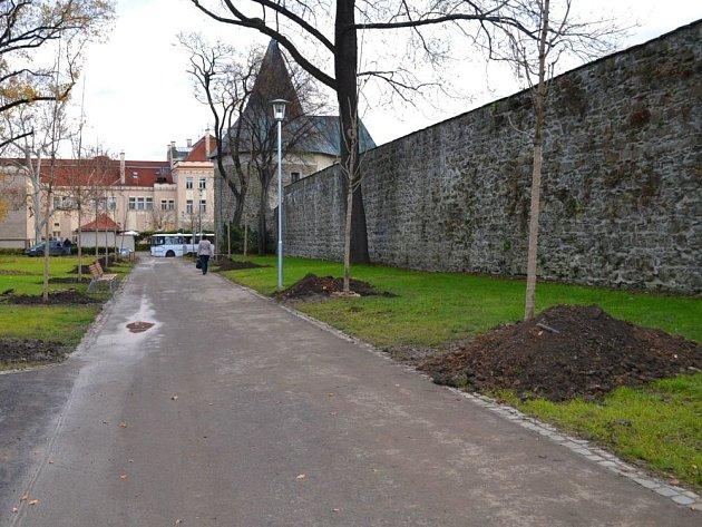 Při hloubení děr zahradníci poničili nový závlahový systém ve Smetanových sadech v Prostějově