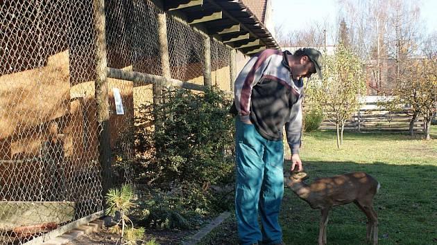Záchranná stanice pro handicapované živočichy v Němčicích nad Hanou přijímá do péče svěřence z celého Prostějovska