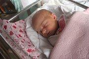 Simona Spolenak, Prostějov, narozena 12. října v Prostějově, míra 52 cm, váha 3550 g