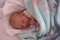 Adélka Sedláčková, Prostějov, narozena 4. října, 50 cm, 3150 g