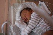 Jolanka Sedláčková, Drysice, narozena 7. prosince v Prostějově, míra 51 cm, váha 3500 g