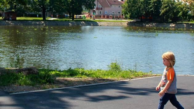 Rybník v Drozdovicích