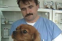 Ivo Plajner ve své veterinární ordinaci.
