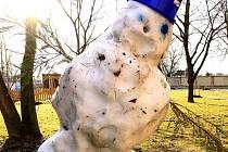 Tající olšanský sněhulák