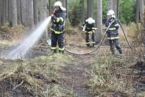 Požár lesního porostu u Dzbele