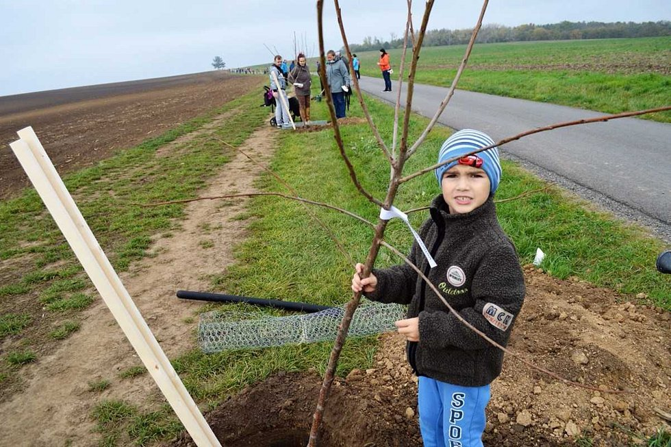 V Pivíně ve spolupráci s Nadací ČEZ vysázeli přes sto stromů.