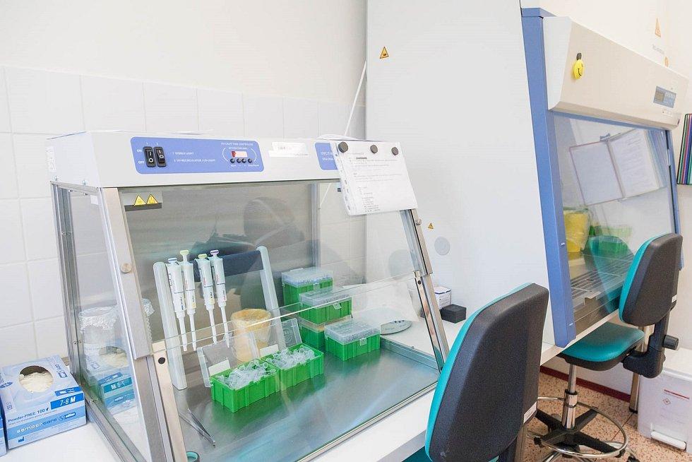 Laboratoře Nemocnice Prostějov