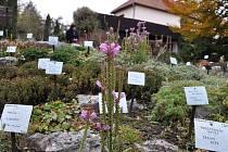 Prostějovská botanická zahrada