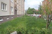 Obyvatelé sídliště Šárka reptají. Po rekonstrukci západní části se totiž zeleň radikálně změnila. K horšímu.