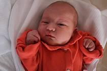 Lucie Nová, Prostějov, narozena 12. března, 49 cm, 3500 g