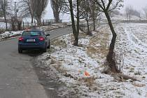 V sobotu 25.1. 2020 se na silnici mezi Ponikví a Ludmírovem na Konicku srazila srna s Audi.