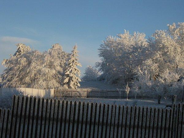 6. Předvánoční zimní ráno vobci Nové Sady na Drahanské Vrchovině