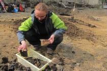 Archeologové v Čelechovicích