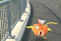 Pokémony je možné chytat všude možně na Prostějovsku. Například na Plumlovské přehradě.