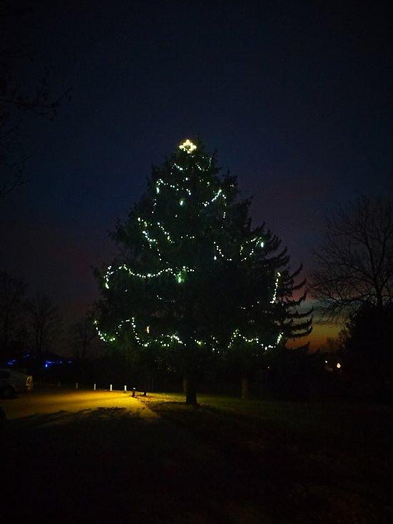 Vánoční strom 2020 v Dobrochově