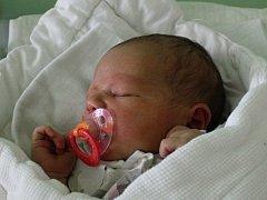 Kristýna Zvozilová, Kostelec na Hané, narozen 11. září, 51 cm, 3600 g