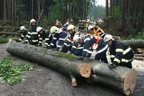 Hasiči odklízejí stromy popadané po bouřce u obce Lipová - Seč na Prostějovsku
