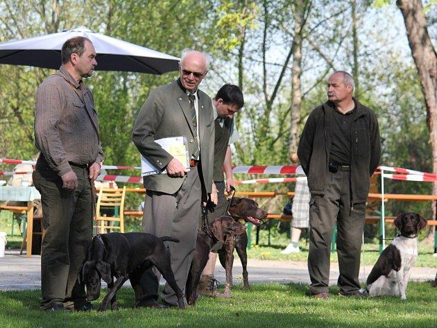 Jarní svod loveckých psů ve Vrchoslavicích