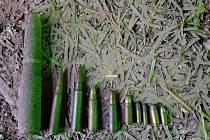 Nalezené náboje v garáži v Bedihošti