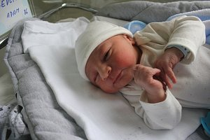 Adam Ševčík, Kostelec na Hané, narozen 1. února v Prostějově, míra 50 cm, váha 3250 g