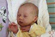 VRadosticích bude vyrůstat Marek Krátký, druhý potomek Marie Fernezové a Milana Krátkého, narozený 16. června 2015 v15 hodin a 5 minut, který se mohl pyšnit mírami 51 centimetrů a 2950 gramů. Marek už má devatenáctiletou sestru Petru.