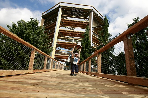 Stezka korunami stromů nenabízí jen úchvatné výhledy do okolí. Návštěvníci všeho věku si tady mohou vyzkoušet imnožství adrenalinových atrakcí, které vznikly podél bezbariérové stezky.