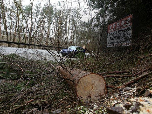 Vítr kácel stromy, které museli hasiči rozřezávat.