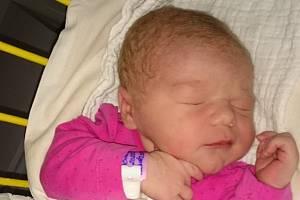 Jasmína Procházková se narodila 4. února 2020 v 8.18, vážila 3 650 gramů a měřila 50 centimetrů. Vyrůstat bude ve Vyšším Brodě s rodiči Petrou a Tomášem Procházkovými a svým starším bráškou Maximem, jemuž je už pět let a na sestřičku se moc těšil.