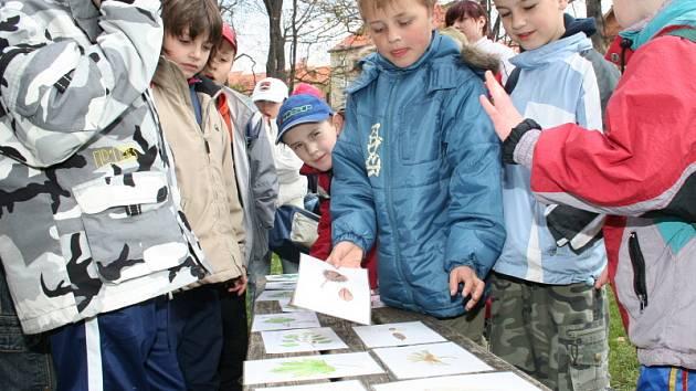 Mezi školáky se strhla při Dni Země vášnivá debata.