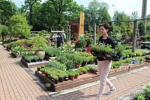 Bylinkový den v Zahradnictví Český Krumlov