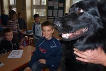 Školáky asi nejvíce zaujal policejní pes Blesk.