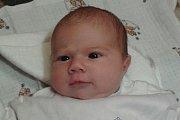 Emma Pufferová, narozena 9. února 2015 v13:19, se mohla pyšnit mírami 53 centimetrů a 4020 gramů. Společně se svými sourozenci, desetiletým Lukášem a skoro tříletou Anežkou, a také rodiči Lenkou a Davidem Pufferovými, žije vMříči u Křemže.
