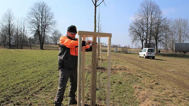 Křižovatka u Velešína porostu dřevin zbavená a výsadba stromořadí na Holkově u Koňské dráhy.