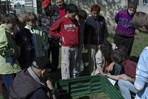Žáci  kaplických základních škol si sami sestavili dohromady darovaný kompostér. Další akcí Hnutí Duha v rámci ekologického projektu budou návštěva dětí v kompostárně ve Freistadtu a přednášky o bioodpadu.