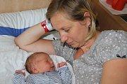 Desetiletý Jiřík a šestnáctiletý Tomík se vúterý 12. července 2016 ve 23 hodin dočkali dalšího sourozence. Ladislav Lajner, chlapeček smírami 53 centimetrů a 4165 gramů, je potomkem Lady a Jiřího Lajnerových zJaronína.