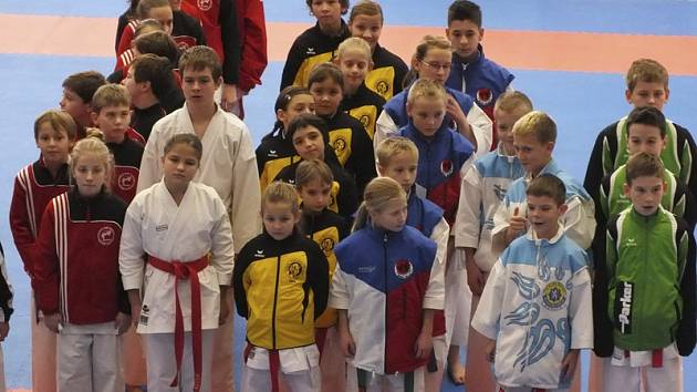 Poprvé v dosavadní krátké závodnické kariéře si právo účasti na Mistrovství ČR vybojovala osmička nadějí oddílu Karate Panthers Český Krumlov (třetí řada zleva ve žlutočerném, zcela v popředí medailistka Nikola Pešadíková).