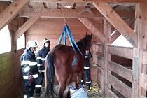Hasiči v Mezipotočí pomohli postavit koně na nohy.