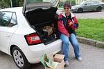 Vlasta Slípková z Loučovic se s radostí ujala role výběrčí kabelek ve své obci.
