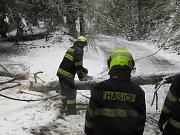 Kapličtí hasiči likvidovali stromy také na silnicích Kaplicka.