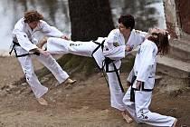 Ovládání bojových technik je pro studenty taekwonda důležité. Neméně podstatné je ale dodržování základních myšlenkových principů tohoto mladého bojového umění, mezi něž patří například zdvořilost, čestnost nebo sebeovládání.