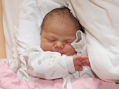 """Lucie Hrdličková se narodila 29. září 2010 v 1.05 hodin, její míry byly 51 centimetrů a 3840 gramů. Rodiče Stanislava Michlová a Václav Hrdlička jsou z Českého Krumlova. """"Je to náš druhý potomek. Natálii jsou tři roky."""""""
