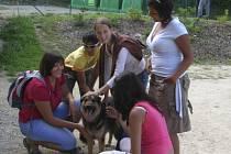 Komunitní centrum Romů v Českém Krumlově se s dětmi vydalo na návštěvu psího útulku.