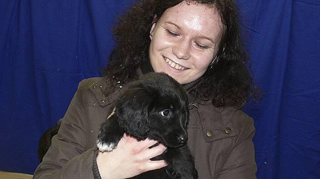 Útulek pro zatoulaná zvířata si v Českém Krumlově získal mnoho příznivců.