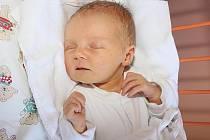 Adéla Hanselová, 13. srpna 2009, 53 cm, 3360 g, Kájov.