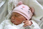 Téměř tříletá Anna se 19. října 2016 v8:02 dočkala malého sourozence. Daniela Klimešová, miminko měřící 44 centimetrů a vážící 2415 gramů, je potomkem Hany a Stanislava Klimešových zChvalšin.