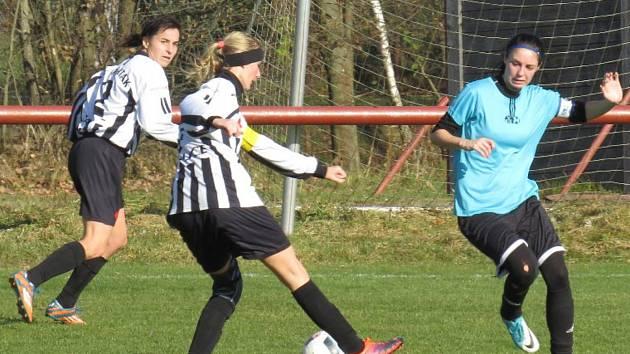 V prvním vzájemném utkání (na snímku) Kapličandy doma celek VS Plzeň udolaly těsně 4:3, v odvetě dominovaly Západočešky.