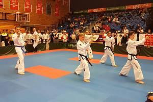 Velmi úspěšně si počínala výprava velešínských taekwondistů na mistrovství republiky v Nymburku. Foto: archiv klubu