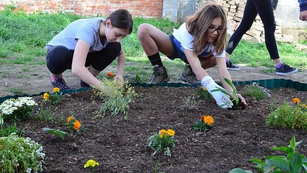 Budou řešit, jak založit komunitní zahradu. Ilustrační foto